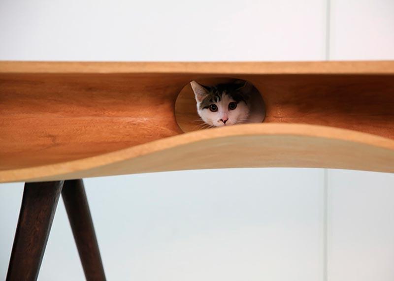 дизайнерская мебель для кошек