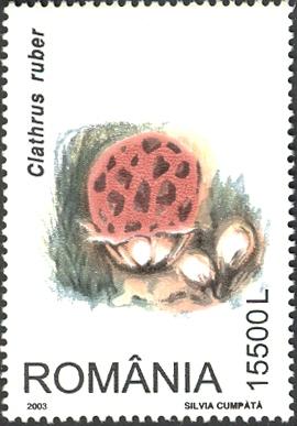 гриб решеточник красный марка румынии