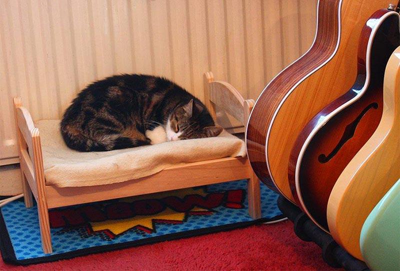 кроватка для кота фото