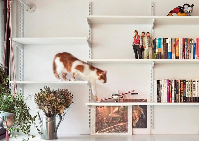 настенные лазалки для кошек фото