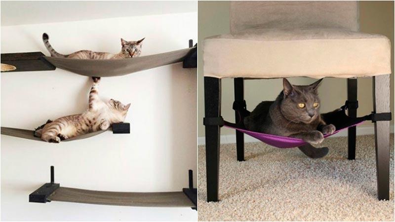 настенные лежанки для кошек