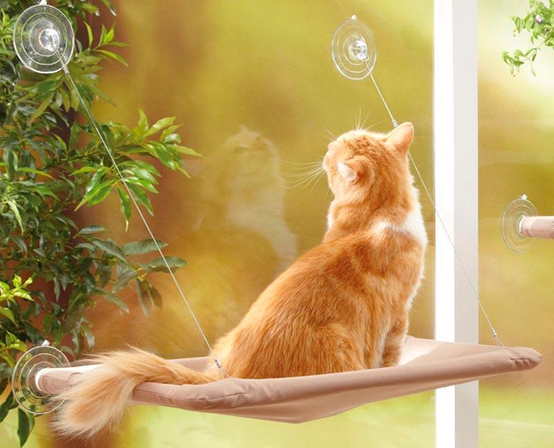 подвесная кошачья мебель