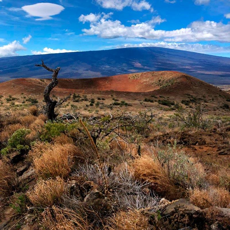 Самые крупные вулканы мира Мауна-Лоа