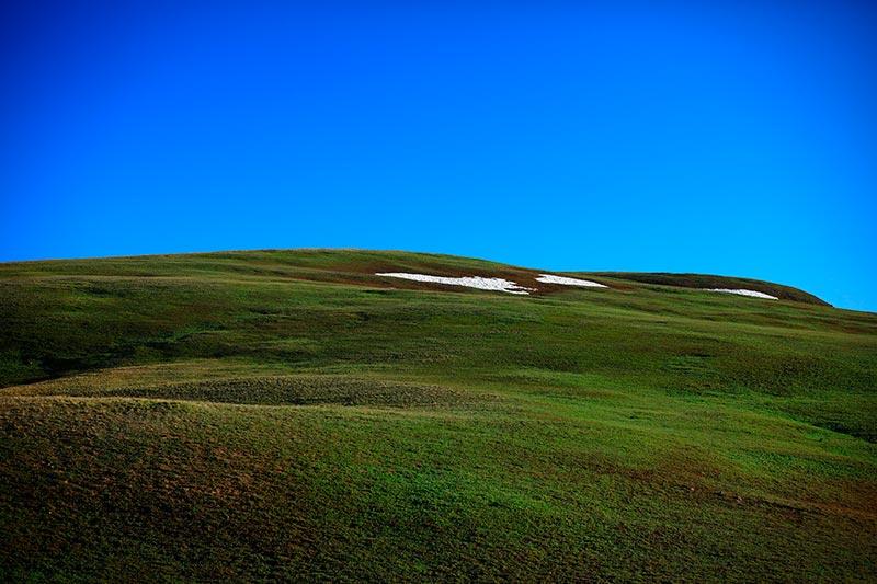 фотографии тундры летом и зимой 14