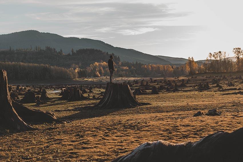 Гора Рейнир штат Вашингтон США 1