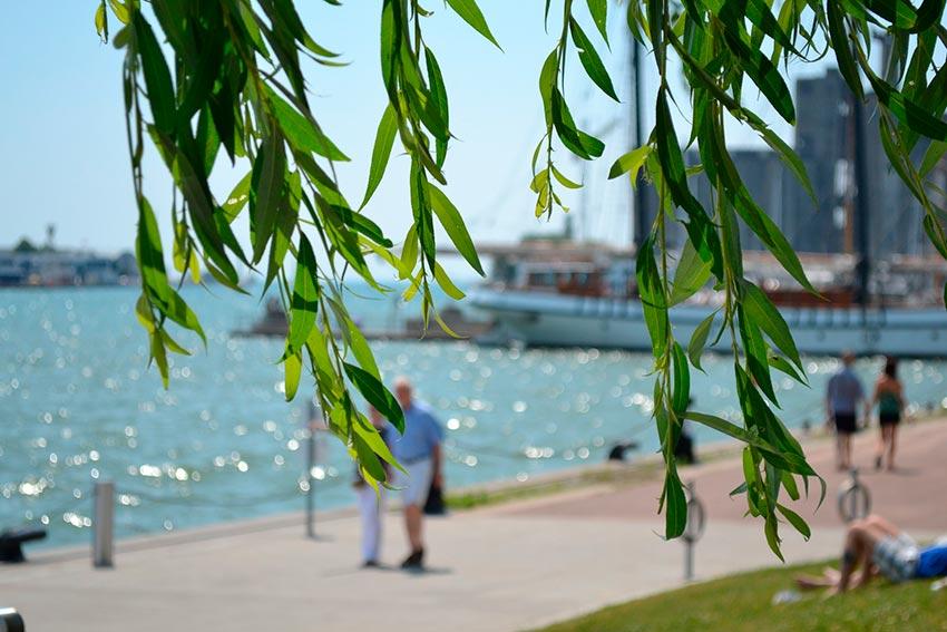 Торонто фотографии города достопримечательности 23