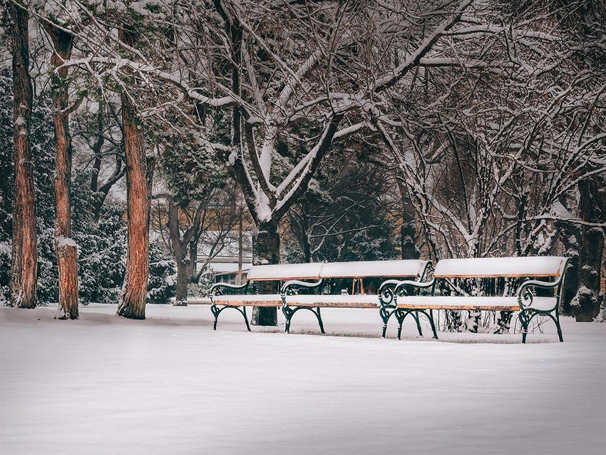 Вена зимой фото отдых 45