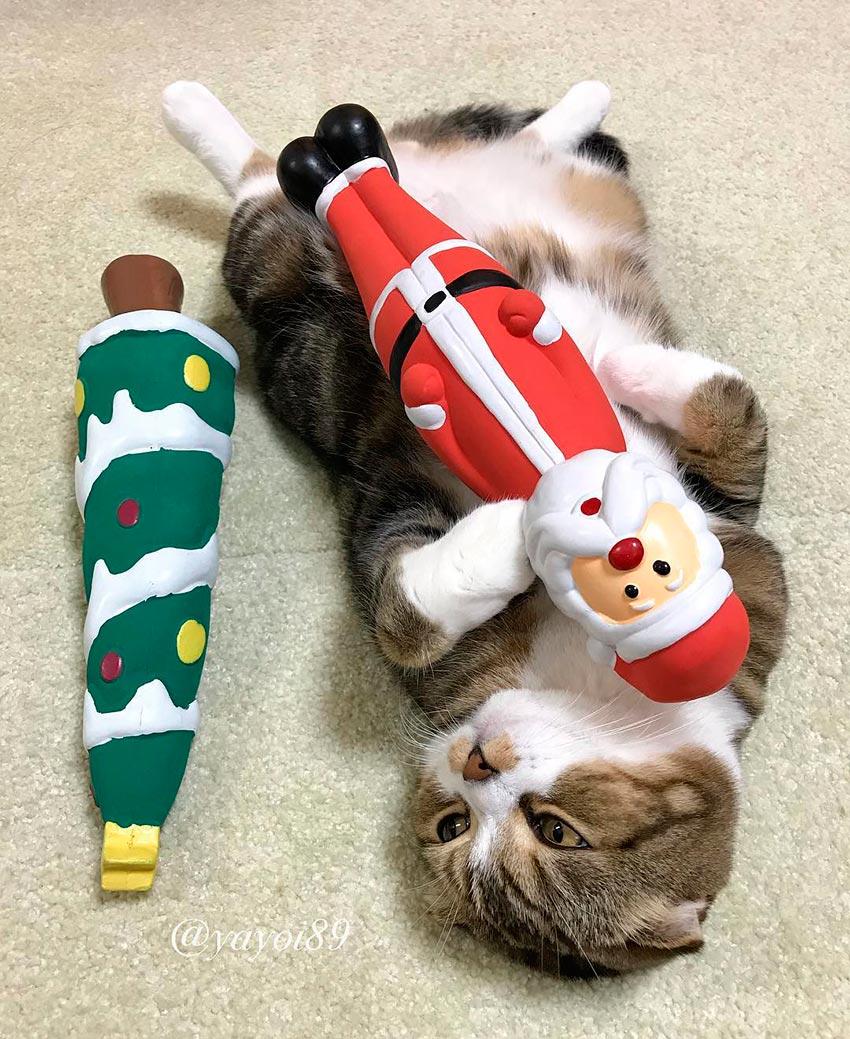 кот и новогодняя елка смешные фото 48