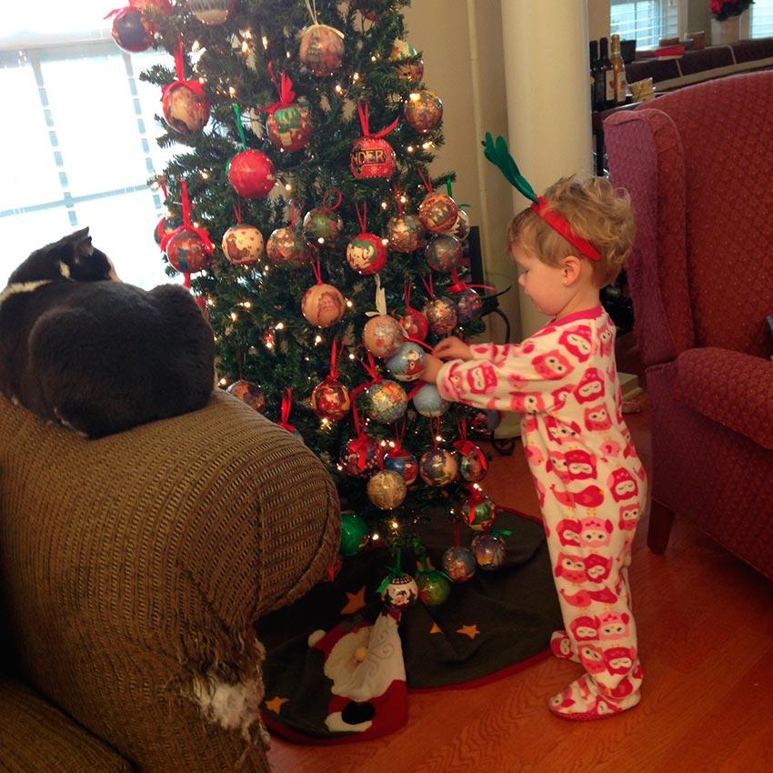 кот и новогодняя елка смешные фото 51