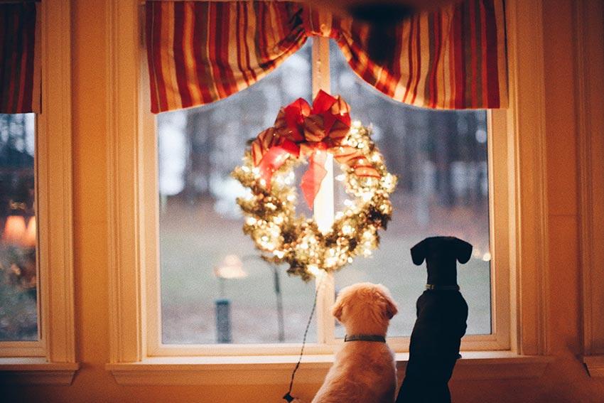 Рождественские венки красивые фото 24