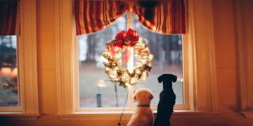 Рождественские венки история фото видео