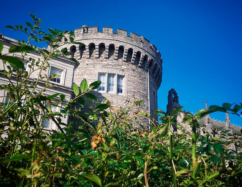 Дублинский замок Ирландия 9